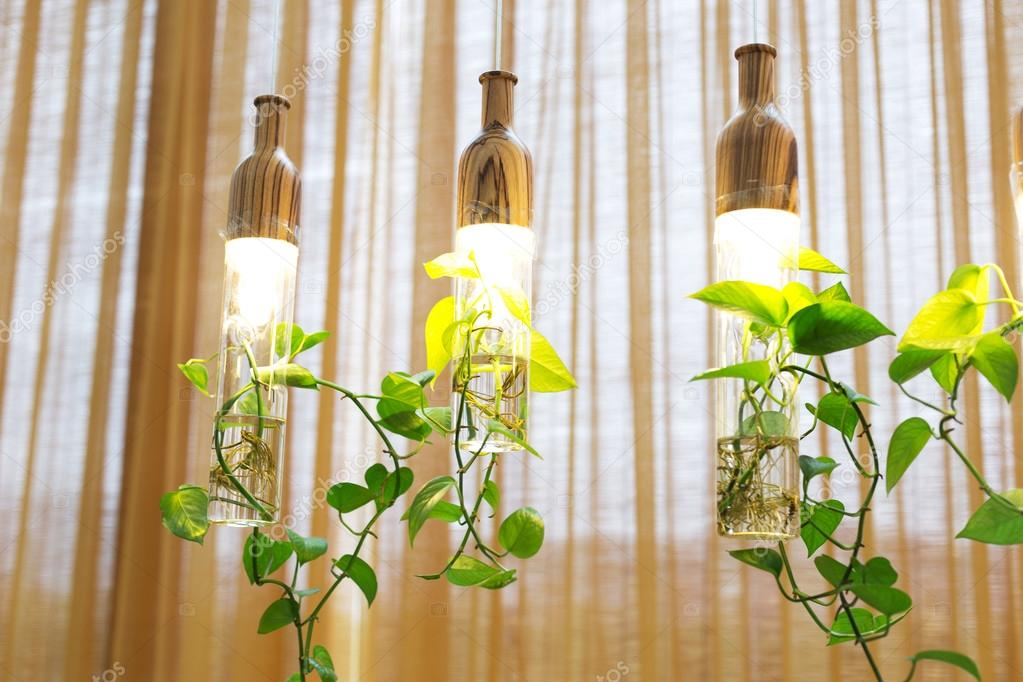 https://st2.depositphotos.com/1006832/9399/i/950/depositphotos_93991522-stockafbeelding-mooie-verlichting-met-planten-opknoping.jpg
