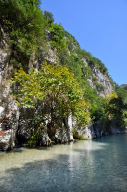 Springs of Acheron river