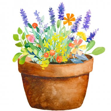 Watercolour jug with flowers