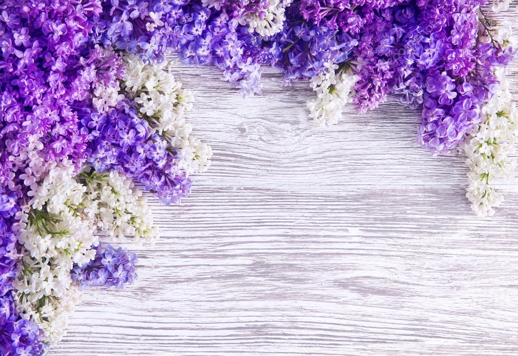 Lilac flower background blooms pink flowers on wood plank stock lilac flower background blooms pink flowers on wood plank stock photo mightylinksfo Choice Image