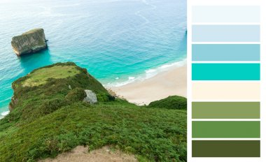 Coast landscape color coded