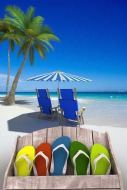 Fun beach vacations
