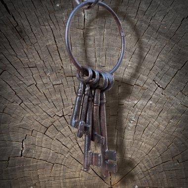Ancient key ring, wood