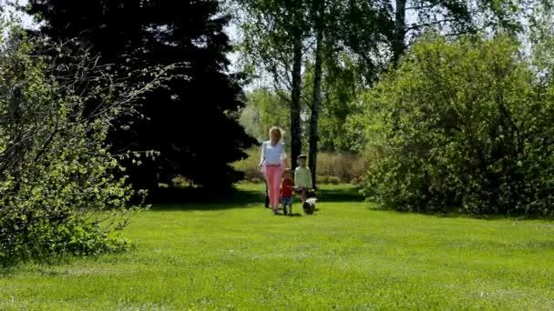 Mladá žena se třemi dětmi a psem, procházky v parku