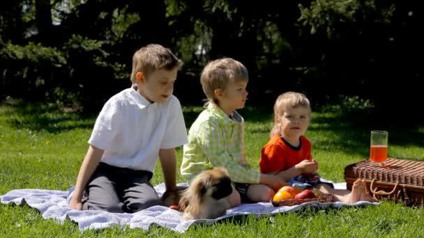 azok a gyermekek, ül a kutya, a zöld gyep a parkban