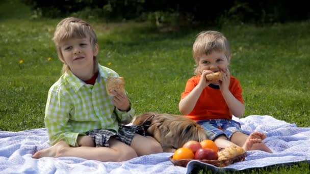 gyermekek, ül a fűben, a kutyát a parkban, és eszik