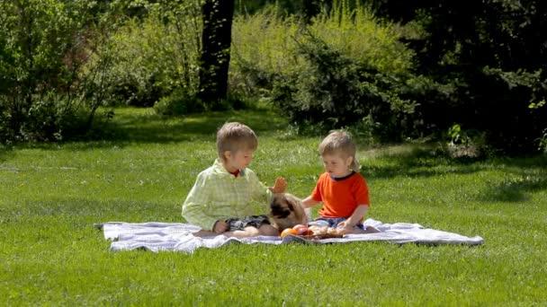 děti s pes sedí na zelené trávě v parku na jaře
