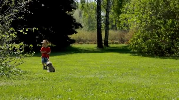 little child boy walking with his dog in green park