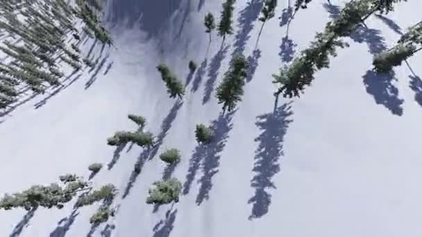 přelet do lesa na zasněžených horách