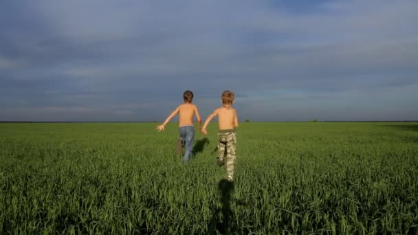 Two boys are playing catch-up in green field