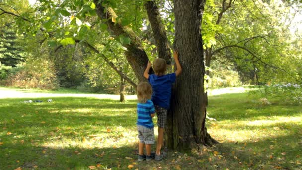 Little boy helps his older brother to climb a tree in the garden.