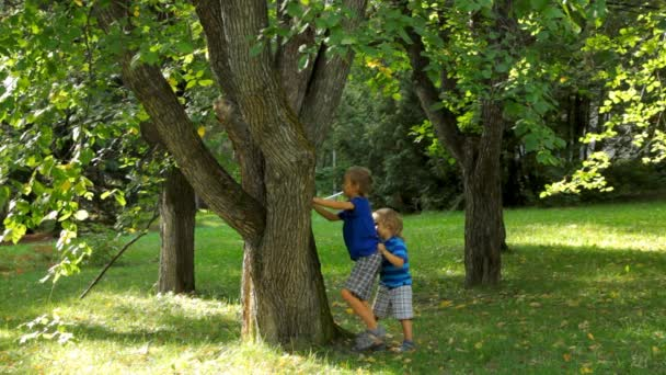 Little kids climbing a tree in the park.