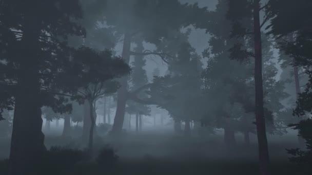 Starý strašidelný Les v mlze na blízko
