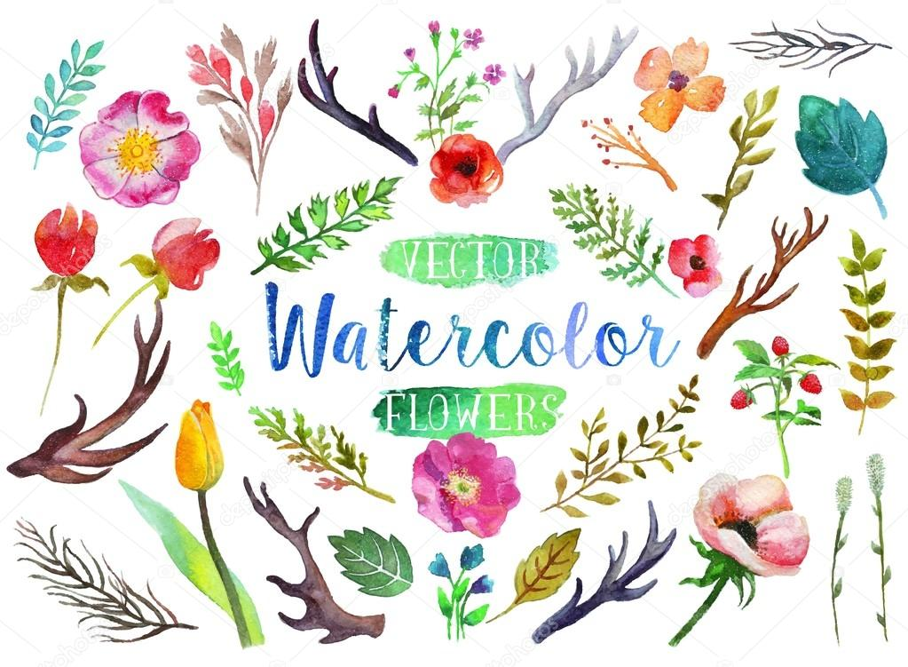 Vector watercolor aquarelle flowers and leaves.