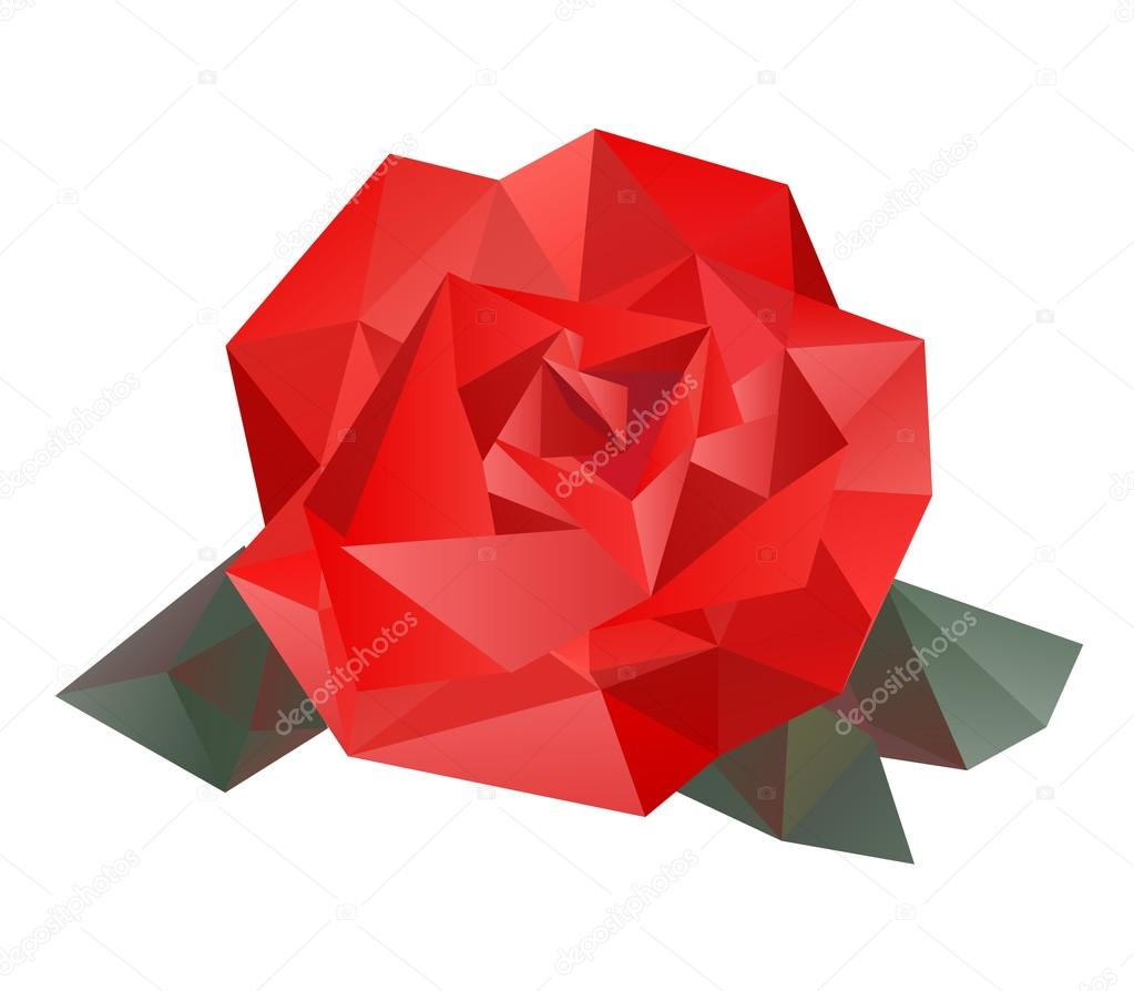 Geometric vector rose