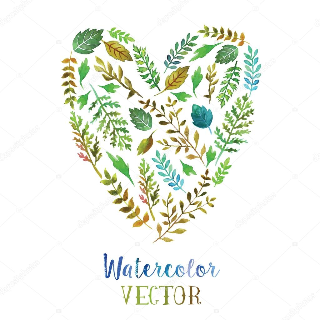 Heart of watercolor  leaves