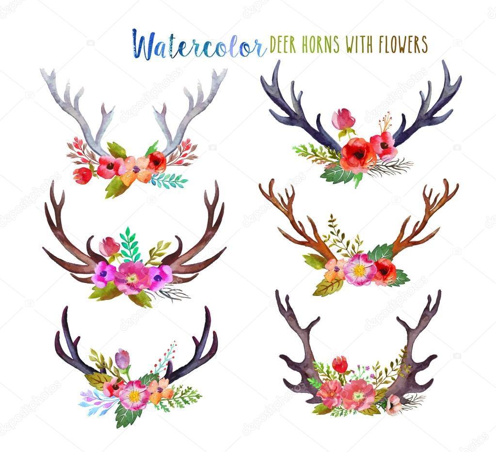 Watercolor deer horns
