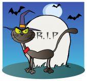 Halloween čarodějnice cat