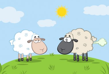 Sheep And Farting Black Head Sheep