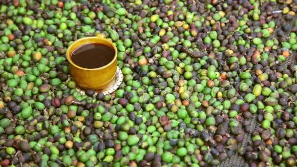 kávová zrna s cup