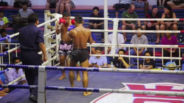 Muay Thai box matches