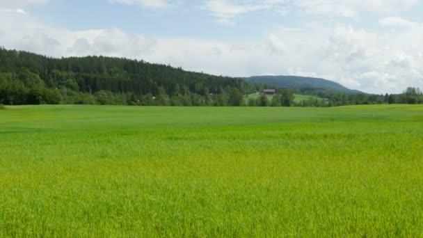 Norvég falu farm közelében Oslo