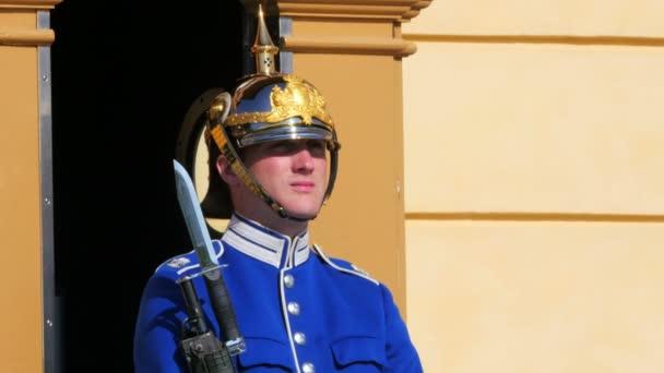 Palazzo di Drottningholm guardia soldato