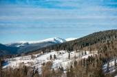 Fotografie Zima v horách