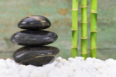 Japanese ZEN garden with Feng Shui