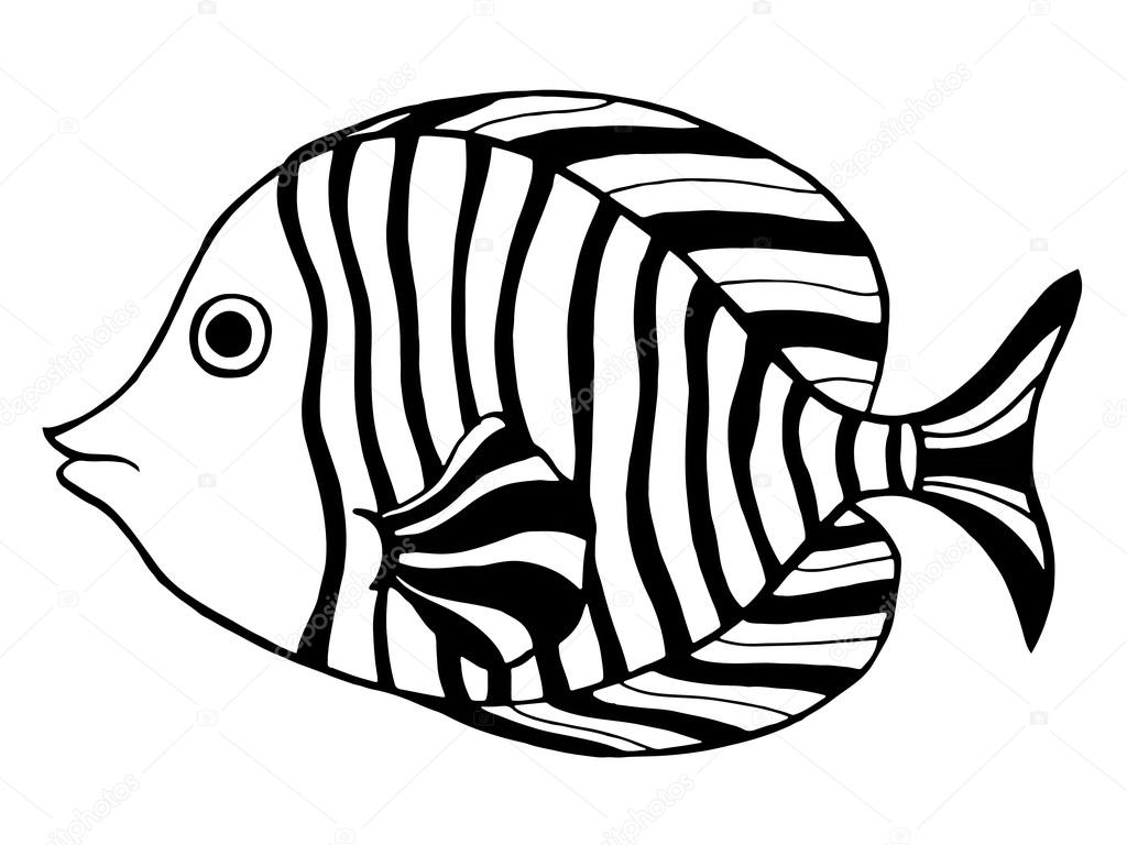 Line Art Of Fish : Hand drawn fish u2014 stock vector © frescomovie #78490492