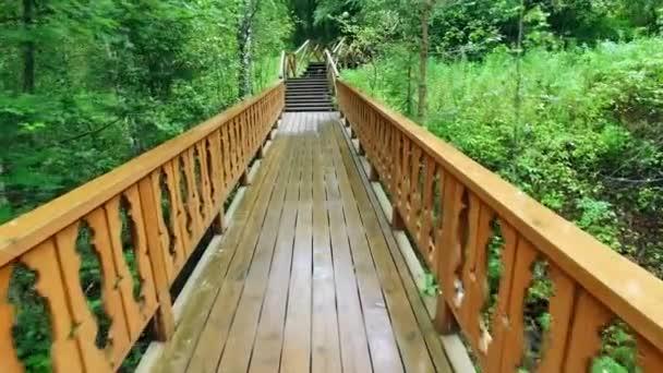 Jít nahoru přes dřevěné schody se zábradlím, rain forrest