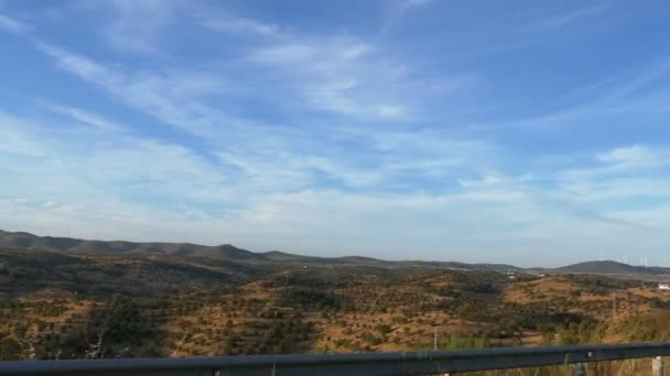Pole a stromy panorama