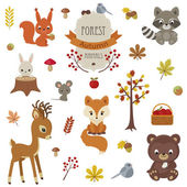 Woodland animals in autumn time.