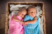 Novorozená dvojčata spící uvnitř proutěný koš