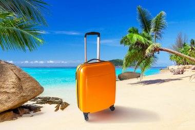 Summer holidays with baggages on the tropical beach stock vector