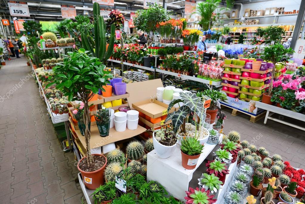 Frisch Blumen in Obi-Shop Moskau Russia.y — Redaktionelles Stockfoto  CS85