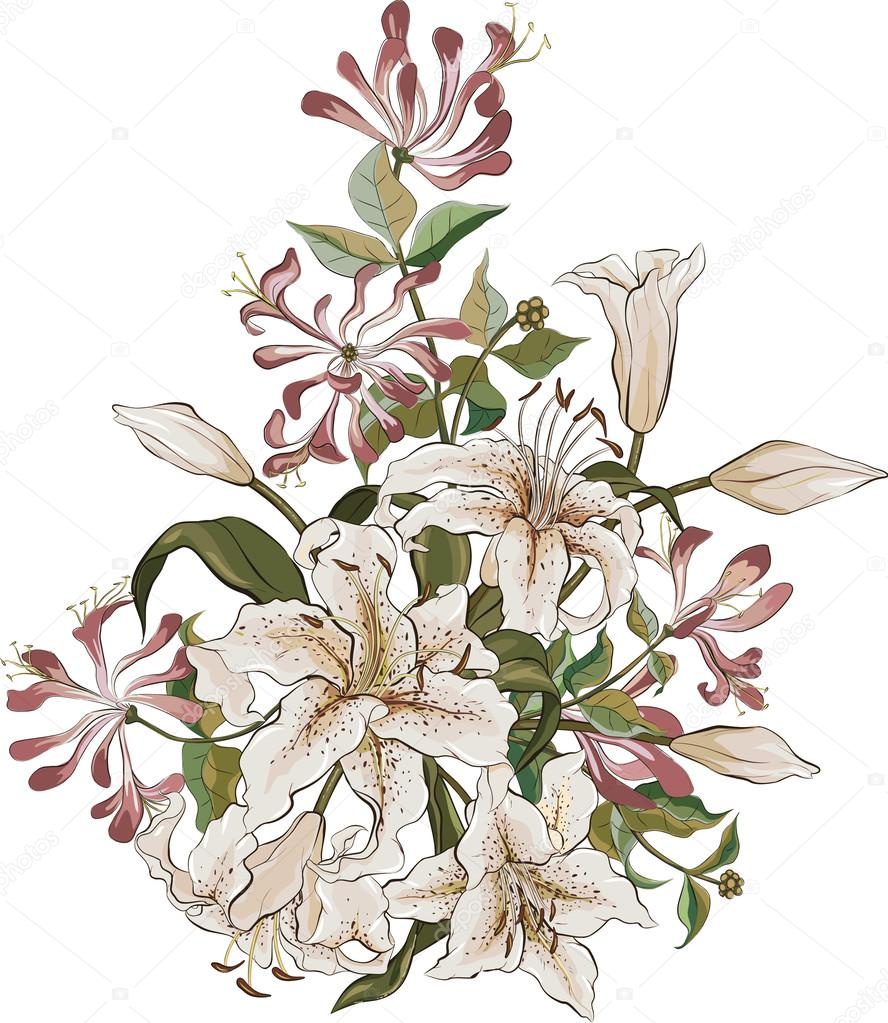Bunch Of Lilies And Honeysuckle Stock Vector Mikhaylova 61507419