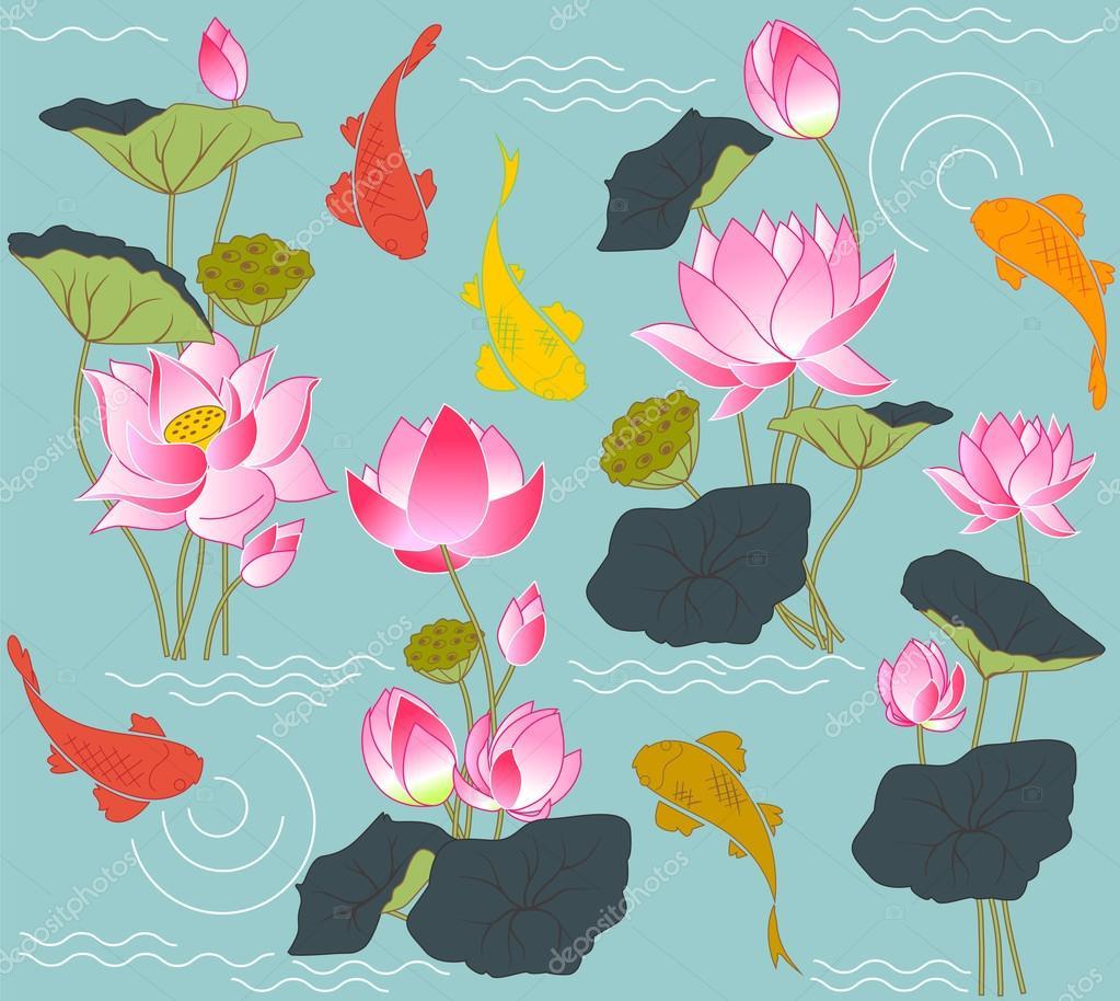 Blooming lotus and koi carp