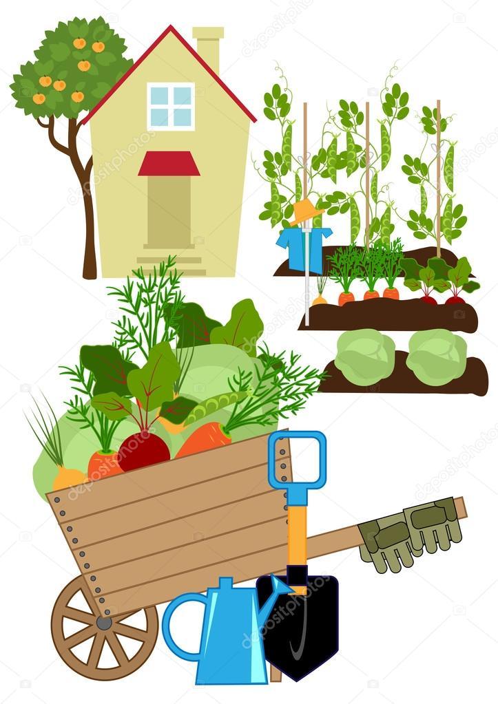 Groenten tuin stockvector minyanna 80394624 for Groenten tuin