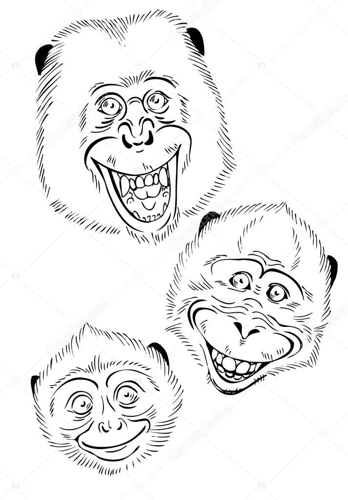 Cabezas de mono funky — Vector de stock © Minyanna #92138354