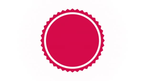 Seal ikonra design, Video Animation