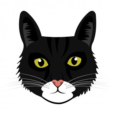 colorful cat front view,vector graphic