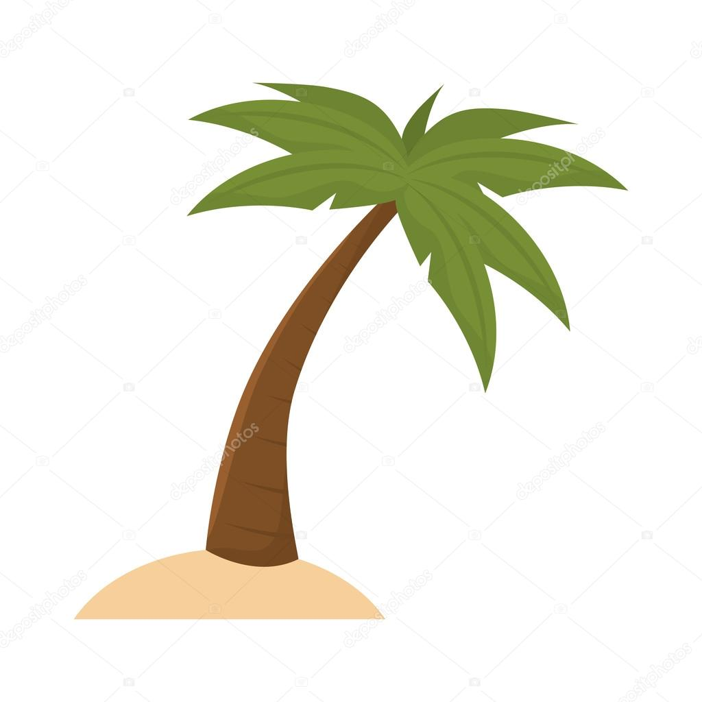 Type Of Tree Palmera Tropical Vector De Stock 169 Yupiramos 121729902