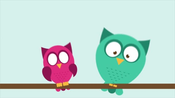 Owl couple in love Video Animation HD 1080