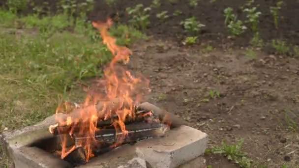 Zomerdag in de tuin met vuur u stockvideo antonuk