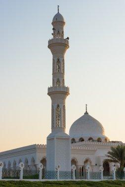 Mosque in Liwa oasis, Abu Dhabi, United Arab Emirates