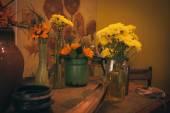 Van Gogh místnost Keukenhof příbuzných