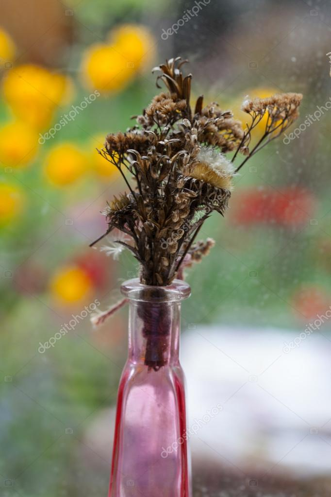 Vintage style still life  with dried flowers on the window