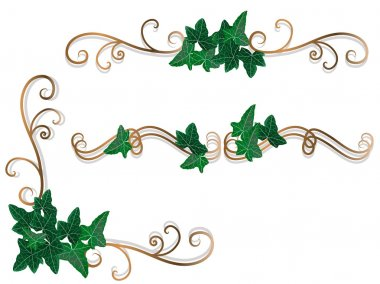 Borders with ivy leaves