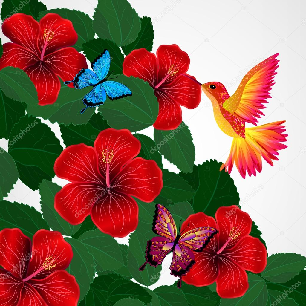Floral design background. Hibiscus flowers with bird, butterflie